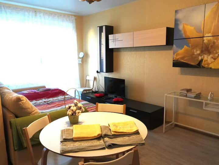 Comfortable apartment m. Park Kultury