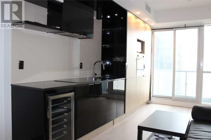 Luxury suite condo in  heart of Toronto Downtown