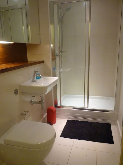 The pristine bathroom facility has a shower with mirrored wall cupboards and a heated towel rack.