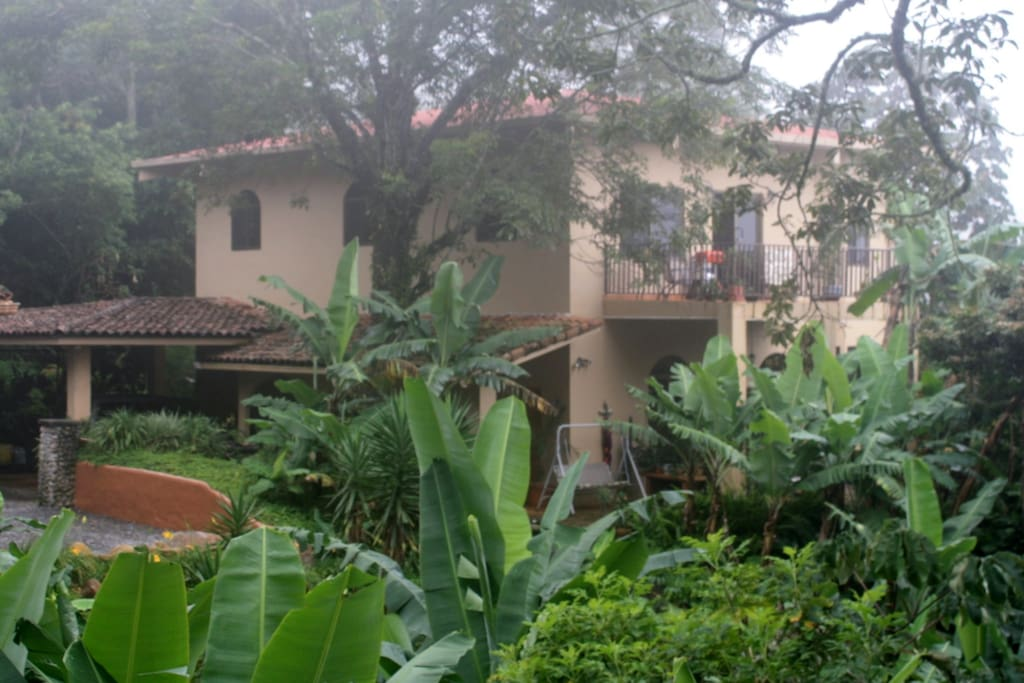 Banana trees, manicured gardens, pathways to views and terraces