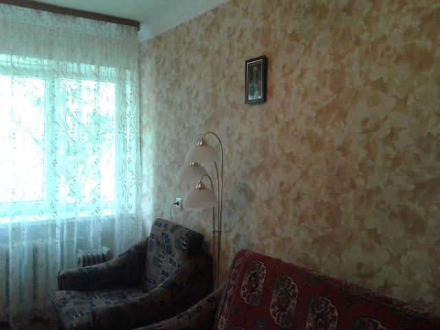 Однокомнатная  отдельная квартира - Voronezh