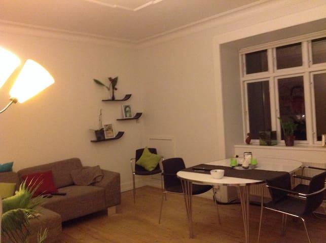 Central beliggenhed. - Frederiksbjerg - Wohnung