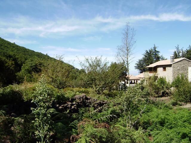 Cottage in Ravelo - El Sauzal   - El Sauzal - House