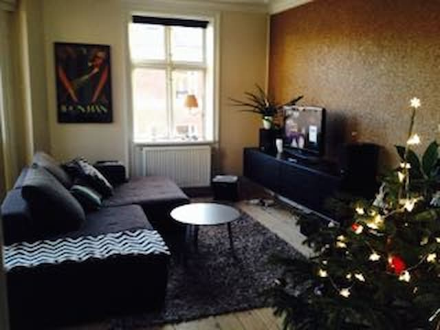 """No Christmas tree anymore:) 42"""" tv with 10 Danish channels, Apple TV, Netflix, stereo."""