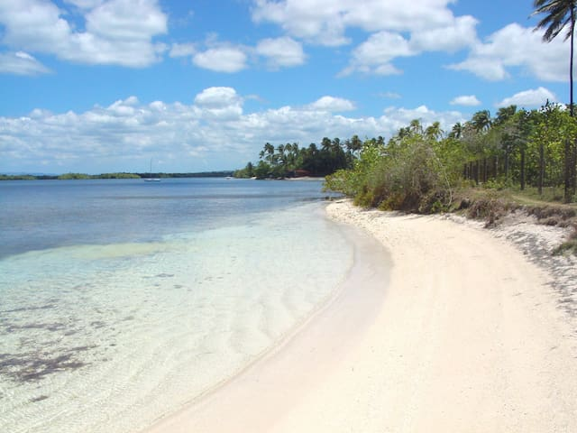 Bahia Real A202 beach, private, quiet setting. - Cabo Rojo - Apartment