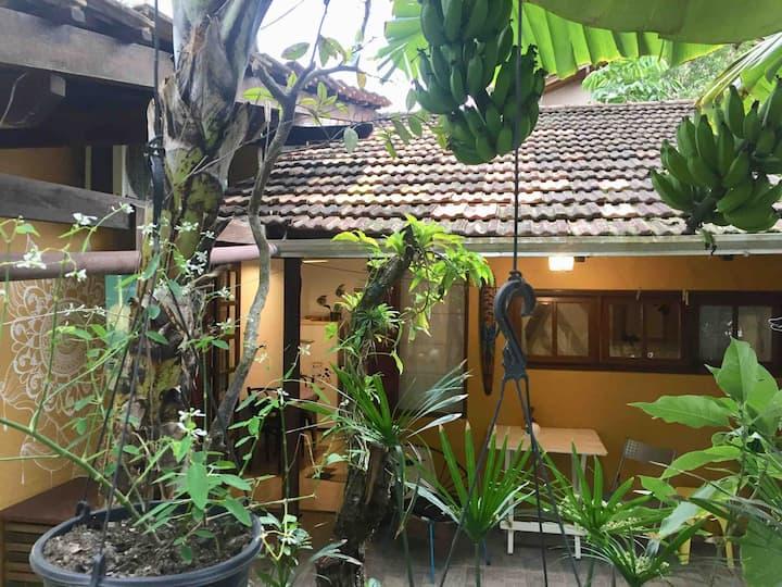 Casa Mico Leão Dourado