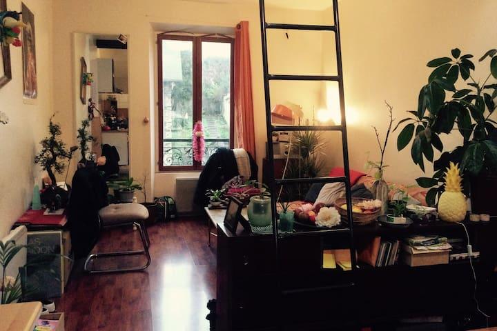 Chambre dans appartement cosy à Montreuil