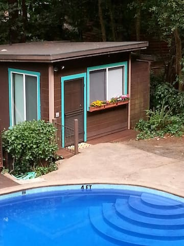Monte Rio Pool House - Monte Rio - Cabin