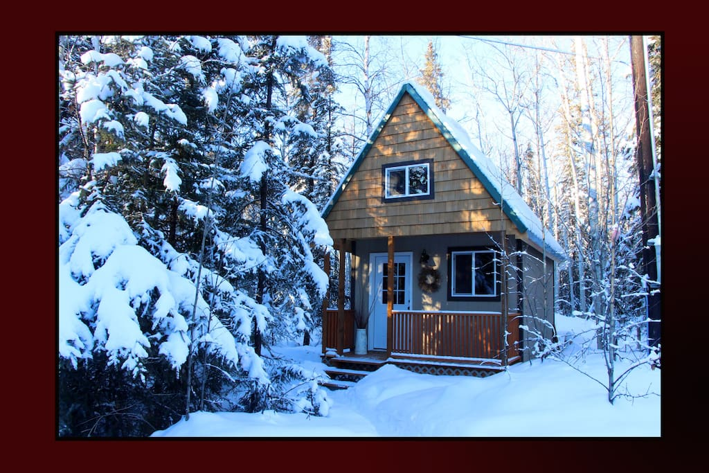 Enjoy our wonderful winter times - watch the Northern Lights on our Property