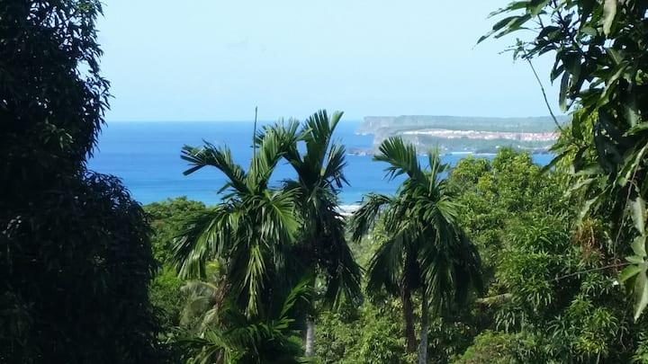 Hidden GEM~Best View of the Island/Close to Navy