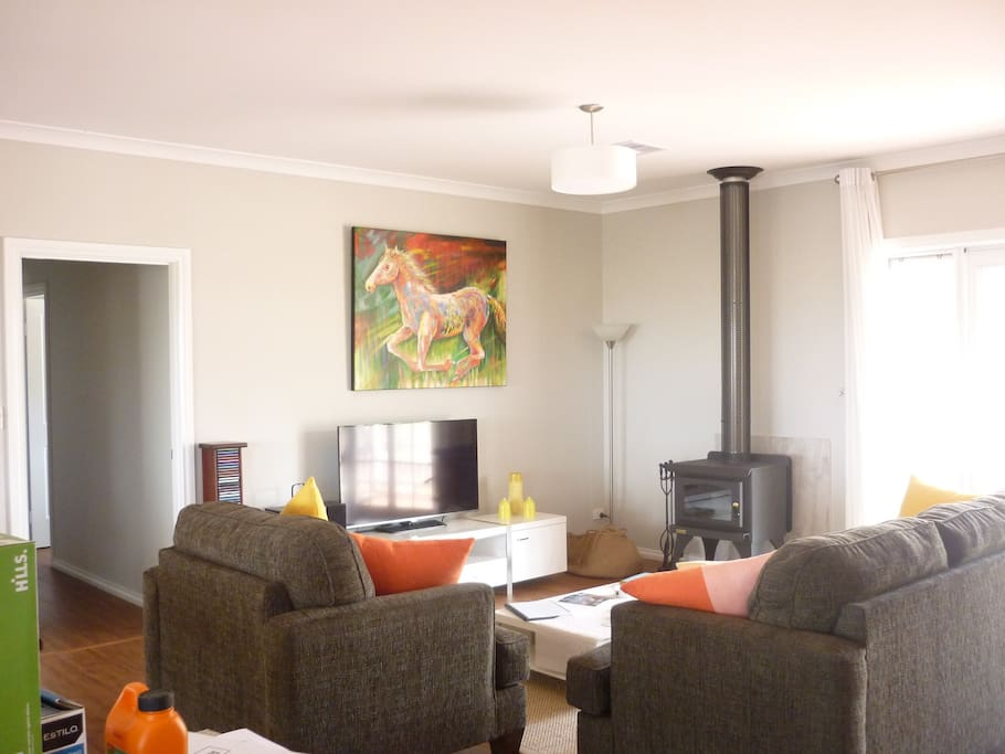Wood heater in lounge