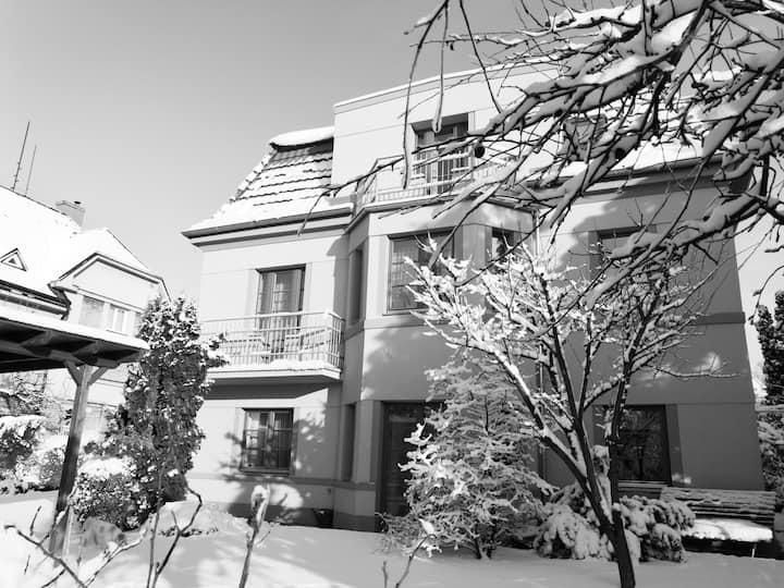 Villa Krocinka