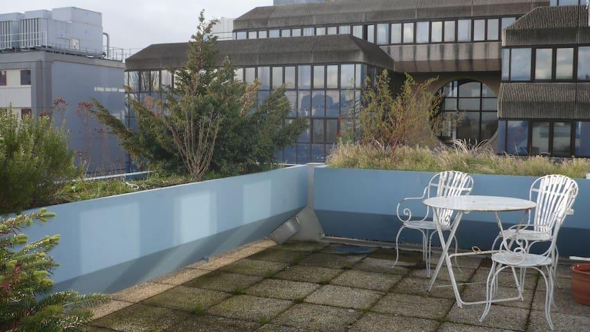 Share a  86 sq meters luminous flat - Noisy-le-Grand - Apartment