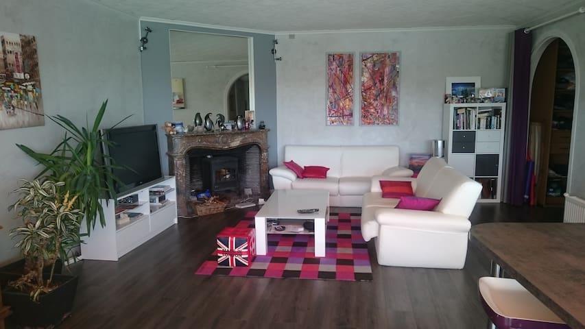 Salon de 60 m2 avec canapé dépliable 2 places, écran plasma, table basse