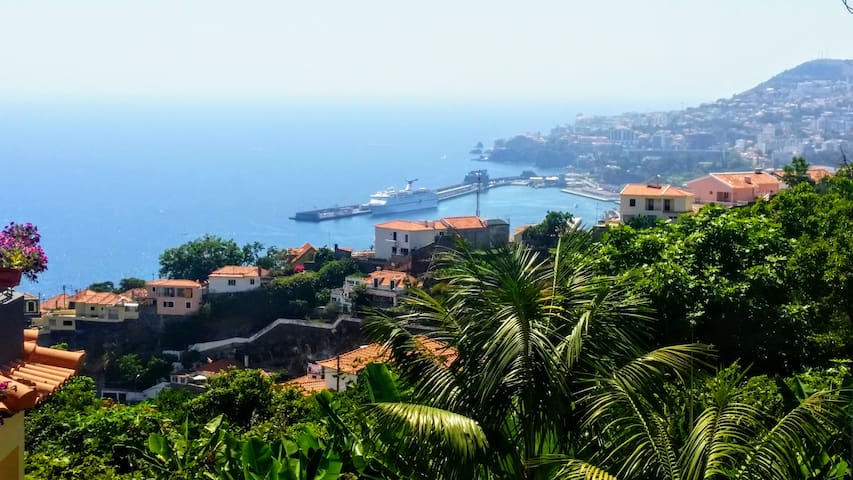 Villa in Funchal sea view with pool