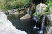 Quedas de água no Bestança
