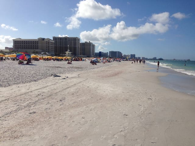 On Clearwater Beach Don't need car 1BR footsteps