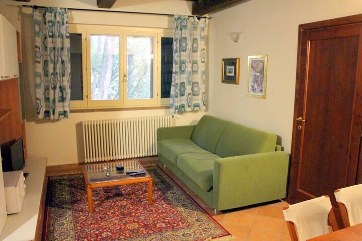 Borgo Alberato - Ortensia 4 - Pitigliano - House