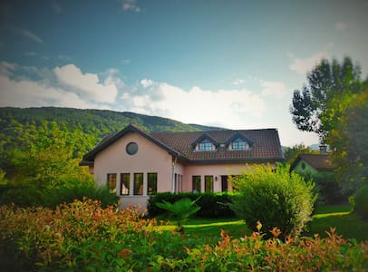 Wonderful Villa in Nature - Sapanca