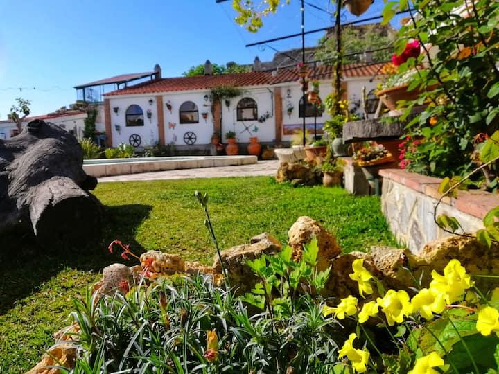 Casa Proyecto Pepe Bravo - Arte de manos y corazón