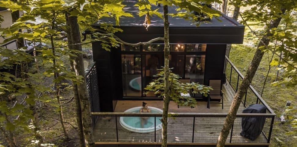 Cabin Sutton 268 - Intimité/Nature/Aventure/Spa
