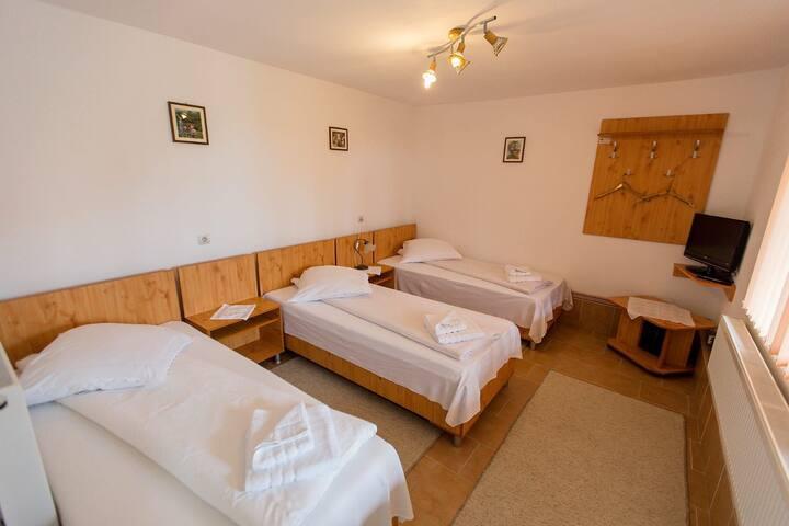 Casa IRIS Petresti