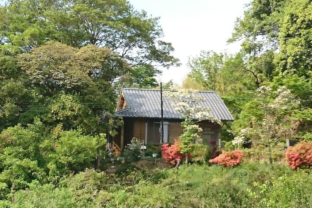 標高15mの一軒家です。 It is a house built on a hill  with an altitude of 15meters.