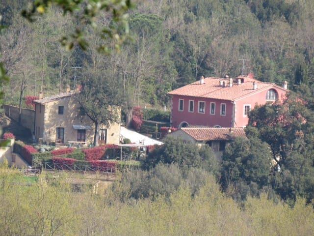 un appartement confortable proche de San Gimignano - San Gimignano - Apartment