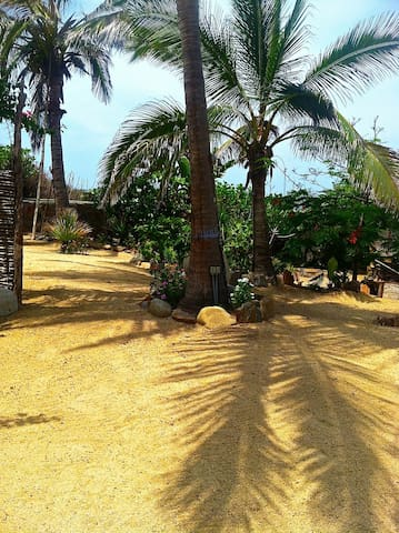 Surf Casita grounds leading to the palapa