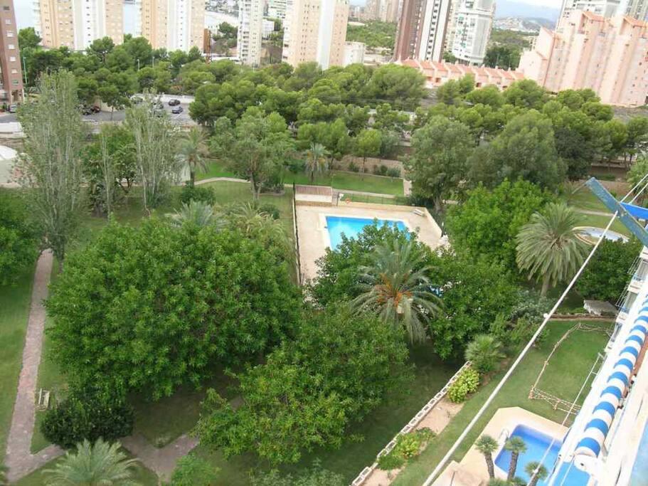 Apartamento en benidorm apartamentos en alquiler en benidorm comunidad valenciana espa a - Alquiler de apartamentos en benidorm particulares ...