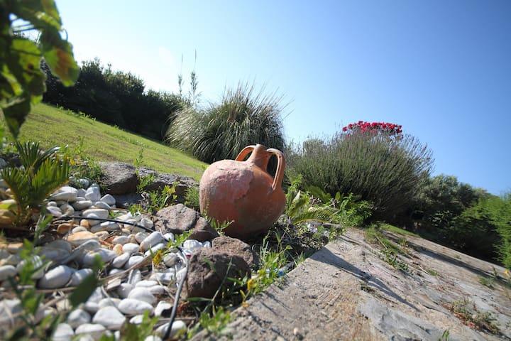 Villa terrazza panoramica Sardegna - IUN P5015