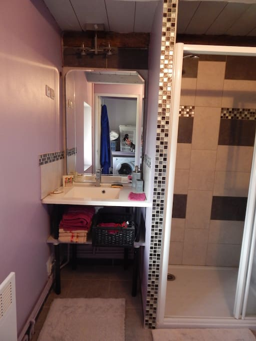 salle de bain douche WC