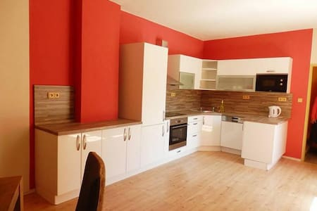 Beautiful apartment with a garage - Liberec - House