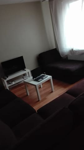 Cozy couch in a homely apartment - Espoo - Apartment