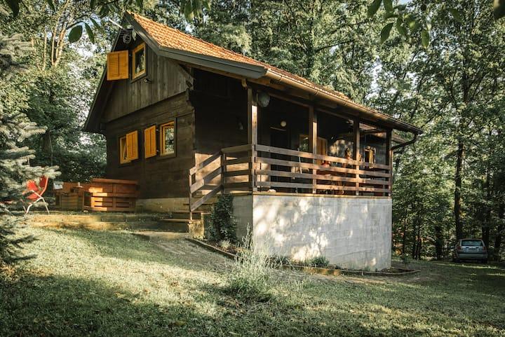 Kavan Cottage, on the river Kupa