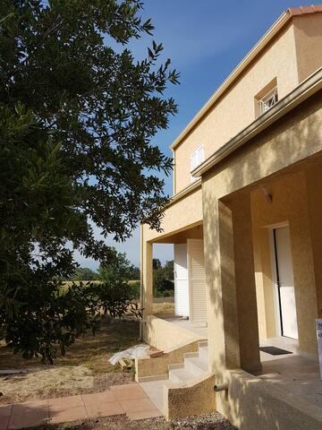Rental large new villa Cote Orientale CORSICA