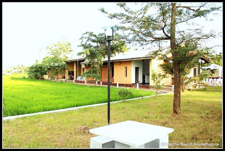 A brand new luxury resort in  Anuradhapura