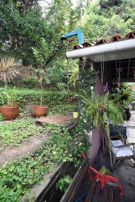 nosso jardim / our garden