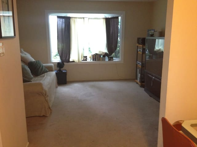 Spacious Apartment w extra room - Staten Island - Flat
