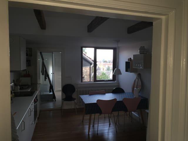 Apartment in the heart of Aarhus - Aarhus - Apartemen