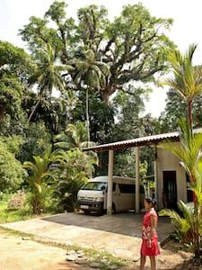 Treasure Villa - Tuttiripitiya