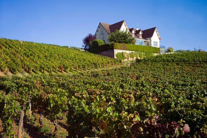 La Maison Corton - Ladoix-Serrigny - House