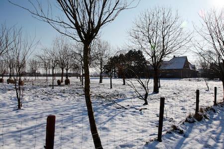 Relaxing on the farm - Loenhout - Bed & Breakfast
