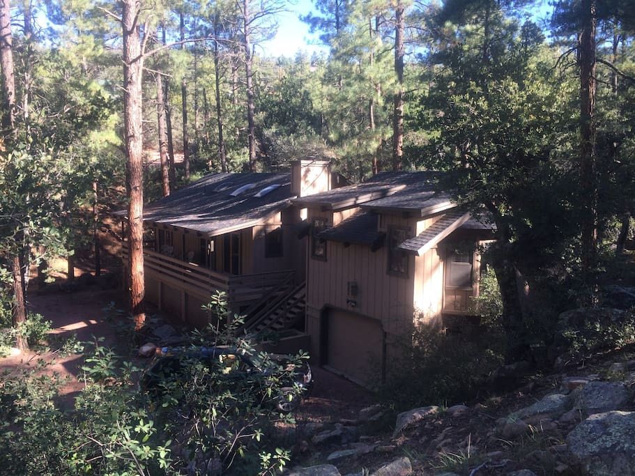 Cozy Secluded Cabin In Pine Cabanes Louer Pine