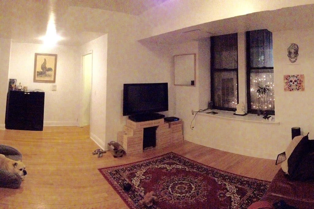 Living room (doggo not included sorry)