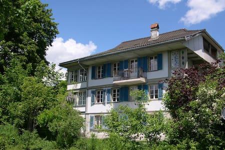 Langenthal Mansarde rechts - Langenthal