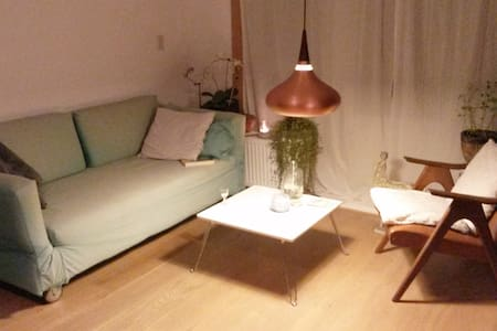 Cozy quiet Apartment close to Amstel River, Centre - Amsterdam
