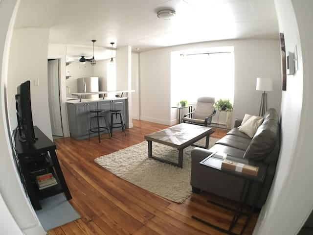 Sunny 1BR Luxury Apartment - Pittsburgh - Apartment