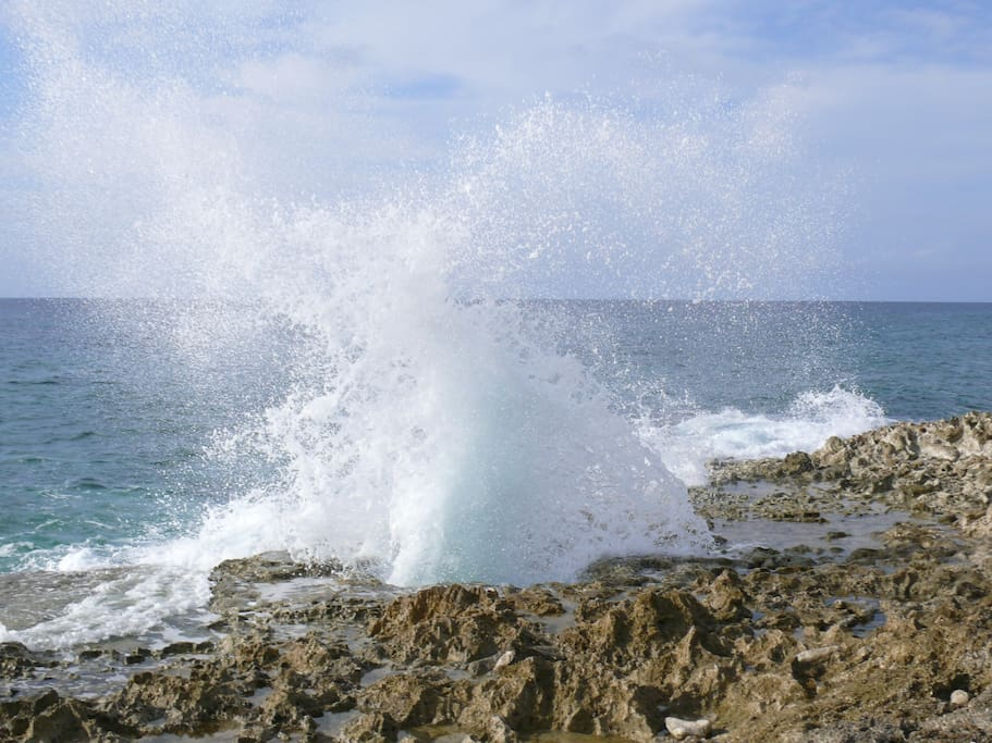 The Blowholes at East End.