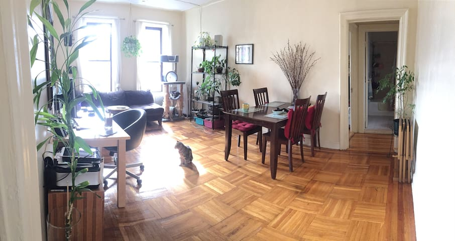 Spacious Private Room next to Prospect Park